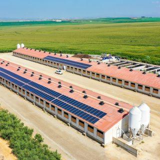 integrar l'energia solar en explotacions agrícoles
